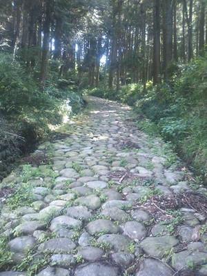 Tokaido_ishidatami_140728